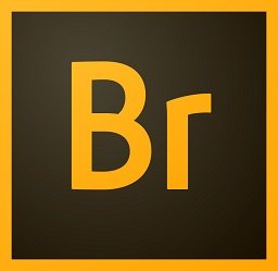 Adobe Bridge CC 2019 торрент на русском