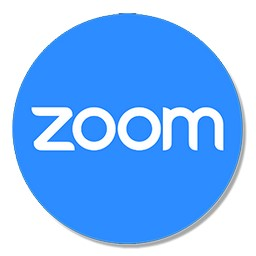 Zoom 2020 (5.0.25694.0524) + Portable