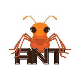 12-Ants 4.31