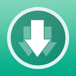 VDownloader Plus 5.0.3949