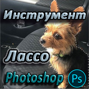 Как пользоваться Лассо в Фотошопе